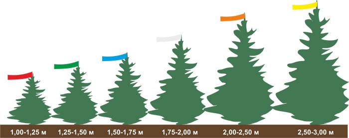 размеры елок